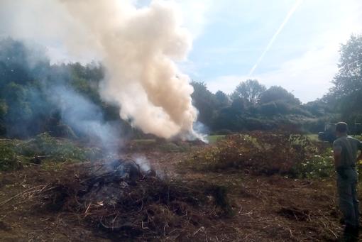 La Regione sospende fino a lunedì mattina lo stato di grave pericolosità per gli incendi boschivi
