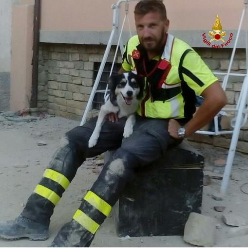 I cinofili dei Vigili del Fuoco liguri ricordano 'Canada' il cane da ricerca morto oggi (Foto)