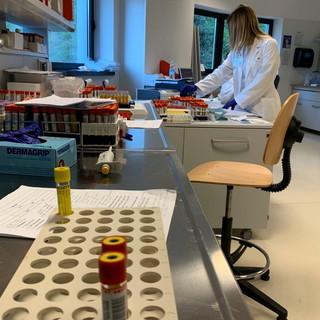 Coronavirus: tornano a calare i positivi in tutta la regione (-12), nessun morto e numeri in discesa