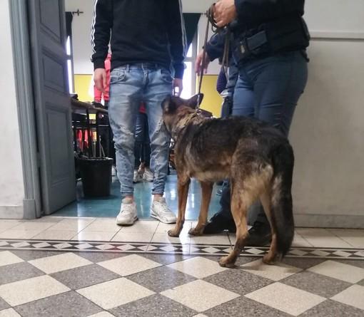 """Operazione """"Scuola Sicure"""": agenti della Polizia al """"Marconi"""" di Sanremo e al Nautico di Imperia (Foto)"""
