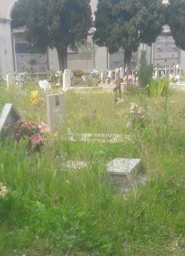 Le immagini dal cimitero di Imperia