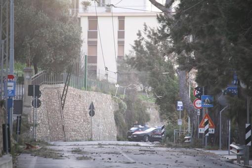 Forte vento stanotte sulla provincia: colpita Sanremo, Aurelia chiusa alla Vesca per alberi pericolanti (Foto e Video)