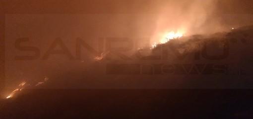 Imperia: incendio di sterpaglie in regione Panegai, sul posto all'opera Vigili del Fuoco e Protezione Civile