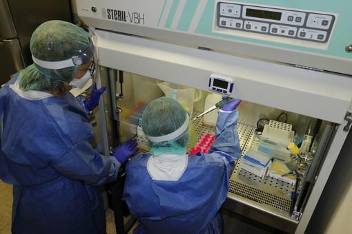 Coronavirus: salgono a 104 i morti in provincia di Imperia, nelle ultime 24 ore segnalati 4 decessi