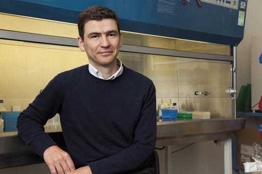 Coronavirus: intervista al Prof. Mihai Netea, dell'Università di Radboud (Olanda), uno tra i massimi esperti di immunologia al mondo