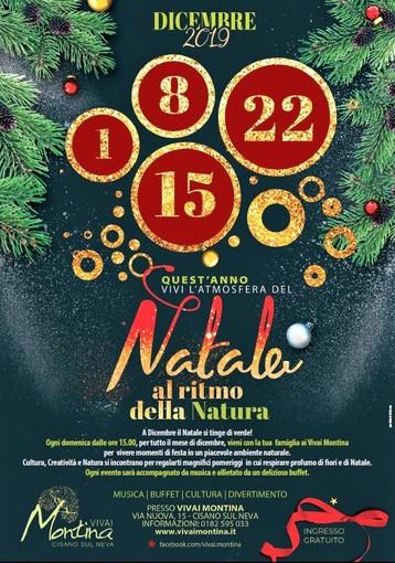 Ai Vivai Montina di Cisano il Natale segue il ritmo della Natura.