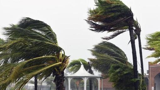Vento forte su tutta la provincia: il picco spetta al genovese mentre da noi a Montegrosso con quasi 100 km/h