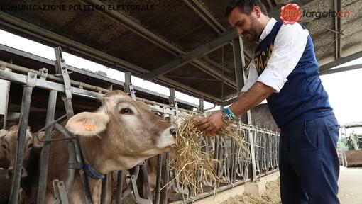 """Agricoltura: """"Votare Lega e scrivere Racca vuol dire portare le istanze delle nostre aziende agricole a Bruxelles"""" (VIDEO)"""