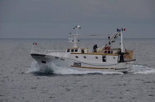 Giornata mondiale degli oceani: da Coldiretti Liguria l'sos pesce, la flotta si riduce