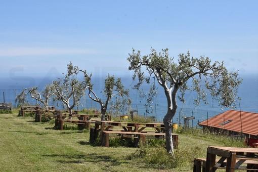 Covid: vacanza in campagna per un italiano su 5, la rivoluzione green spinge la scelta turistica