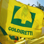 """Lavoro, Coldiretti: """"Fuga di cervelli all'estero, ma è dal territorio che si può ripartire"""""""