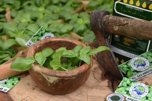 Diano Marina, Aromatica presenta 3 libri: dalle erbe, al miele, alla cipolla egiziana