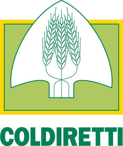 """Coronavirus, Coldiretti: """"Boom di latte in arrivo dall'estero alimenta speculazioni per chi approfitta dell'emergenza in corso"""""""