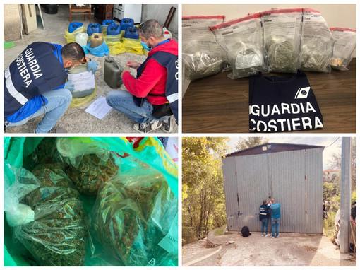 Imperia, operazione della Guardia costiera: arrestato un marittimo per furto di gasolio e coltivazione di marijuana (foto)