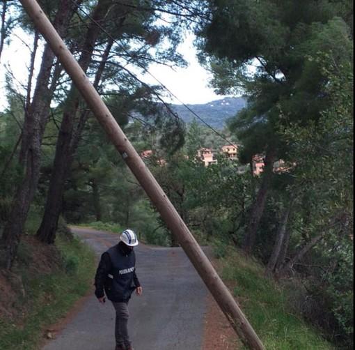 Diano Marina, cade un palo del telefono in località Ortopino: il sindaco Chiappori intima alla Telecom di compiere verifiche