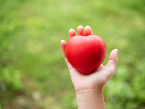 Donazione midollo osseo: anche il Liguria il progetto pilota dell'Admo 'Match at home'