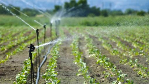 Emergenza idrica, San Bartolomeo al Mare: il Comune vieta in frazione Chiappa l'uso dell'acqua per irrigare campi e giardini