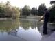 Lucinasco, operazione tartarughe 'azzannatrici': liberato il laghetto di Santo Stefano