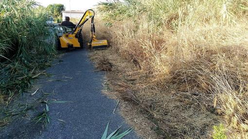 San Bartolomeo al Mare: Egea ha pulito la strada lungo l'argine dello Steria (foto)