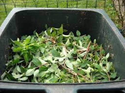 Imperia: conferimento di rifiuti vegetali, presto potrebbe aprire un centro di raccolta