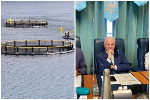 """Imperia, itticoltura alla Galeazza, a settembre si svolgerà la conferenza dei servizi. Scajola critico: """"Nel 2017 c'erano le condizioni per revocare la concessione"""""""