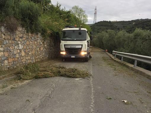 San Bartolomeo al Mare, prosegue lo sfalcio e la pulizia di strade e cunette (foto)